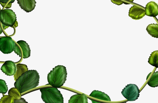 550x359 Green Leaves Border, Frame, Green Leaves, Plant Png Image For Free