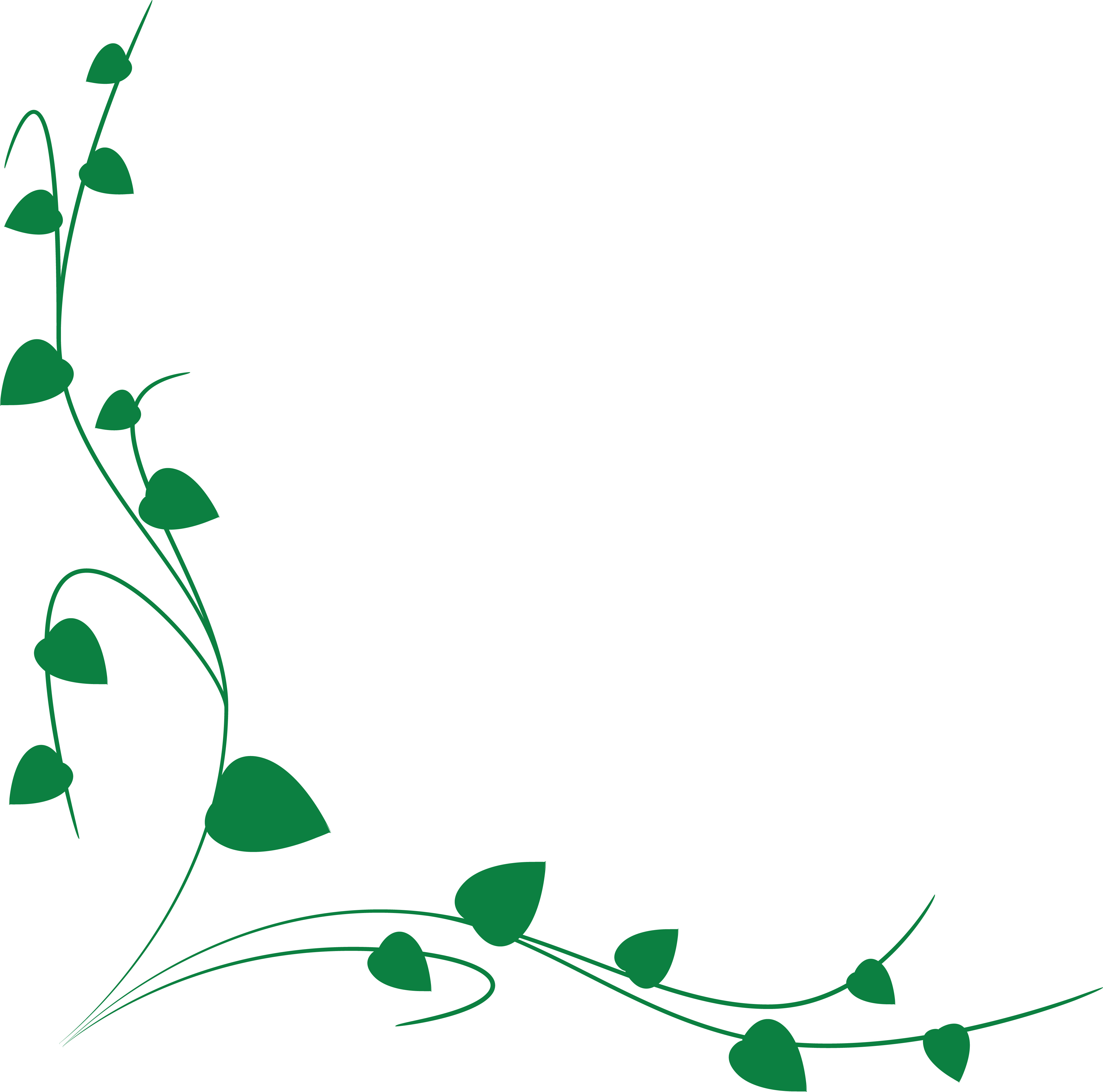 4000x3959 Clipart Of A Green Vine Border