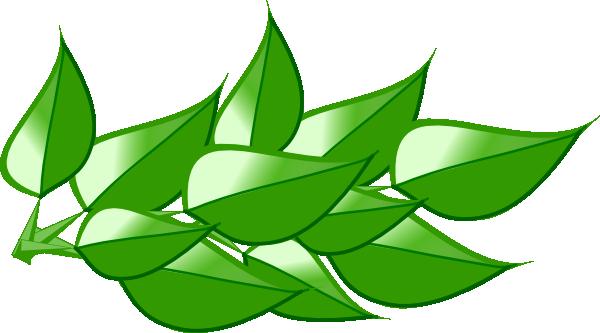 600x333 Leaves 4 Clip Art