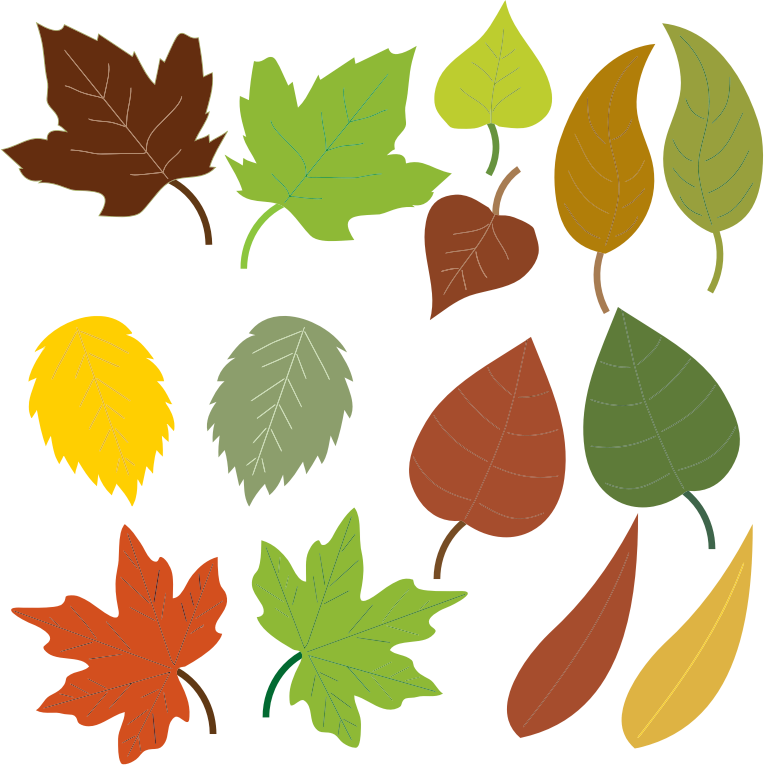 764x765 Leaves Clip Art