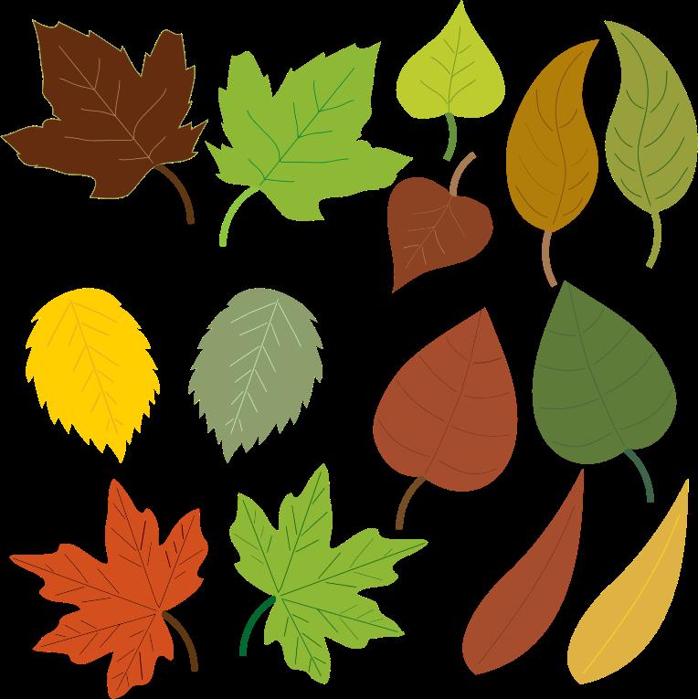 764x765 Leaves Clip Art