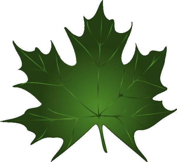 600x549 Pumpkin Vine Leaf Clipart