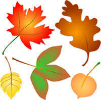 200x198 Autumn Leaves Clip Art, Fall Foliage 4 Seasons Graphics