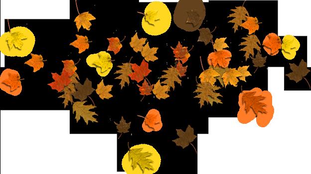 624x350 Fall Leaves Clip Art