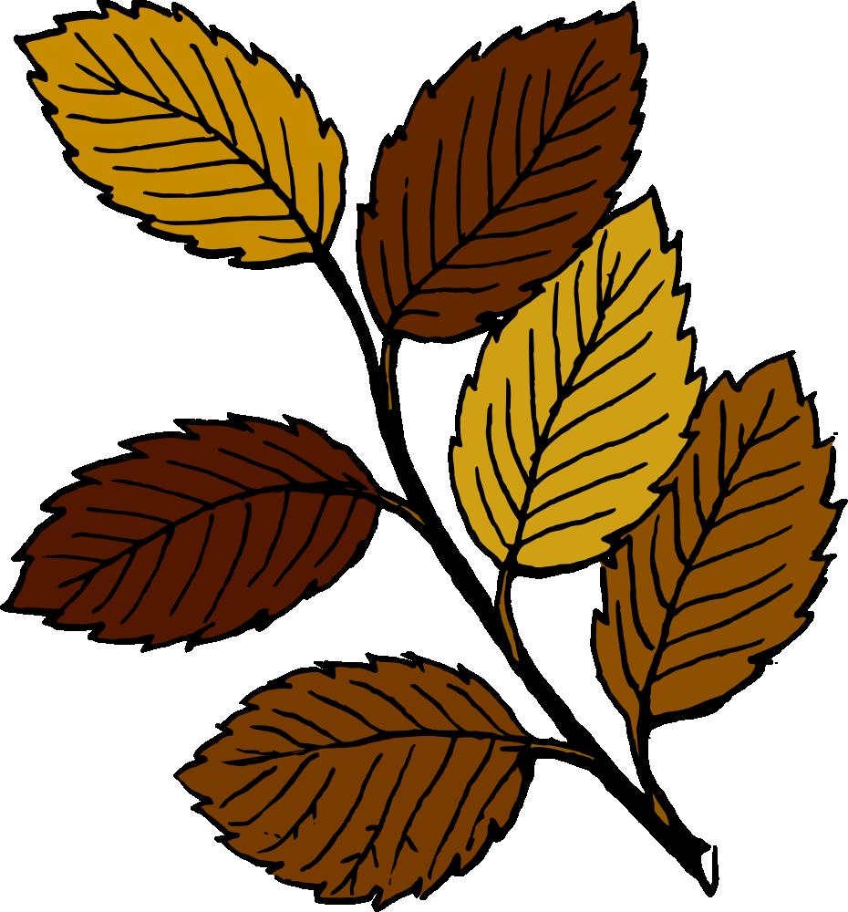 930x1000 Autumn Leaves Clipart