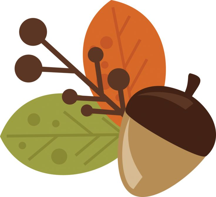 736x671 Autumn Acorn Clipart, Explore Pictures