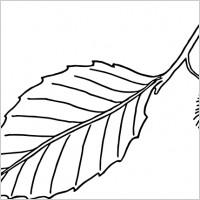 200x200 Apple Leaf Clip Art