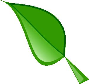 301x285 Top 75 Leaf Clip Art