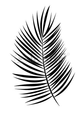 327x450 Coconut Leaves Clipart