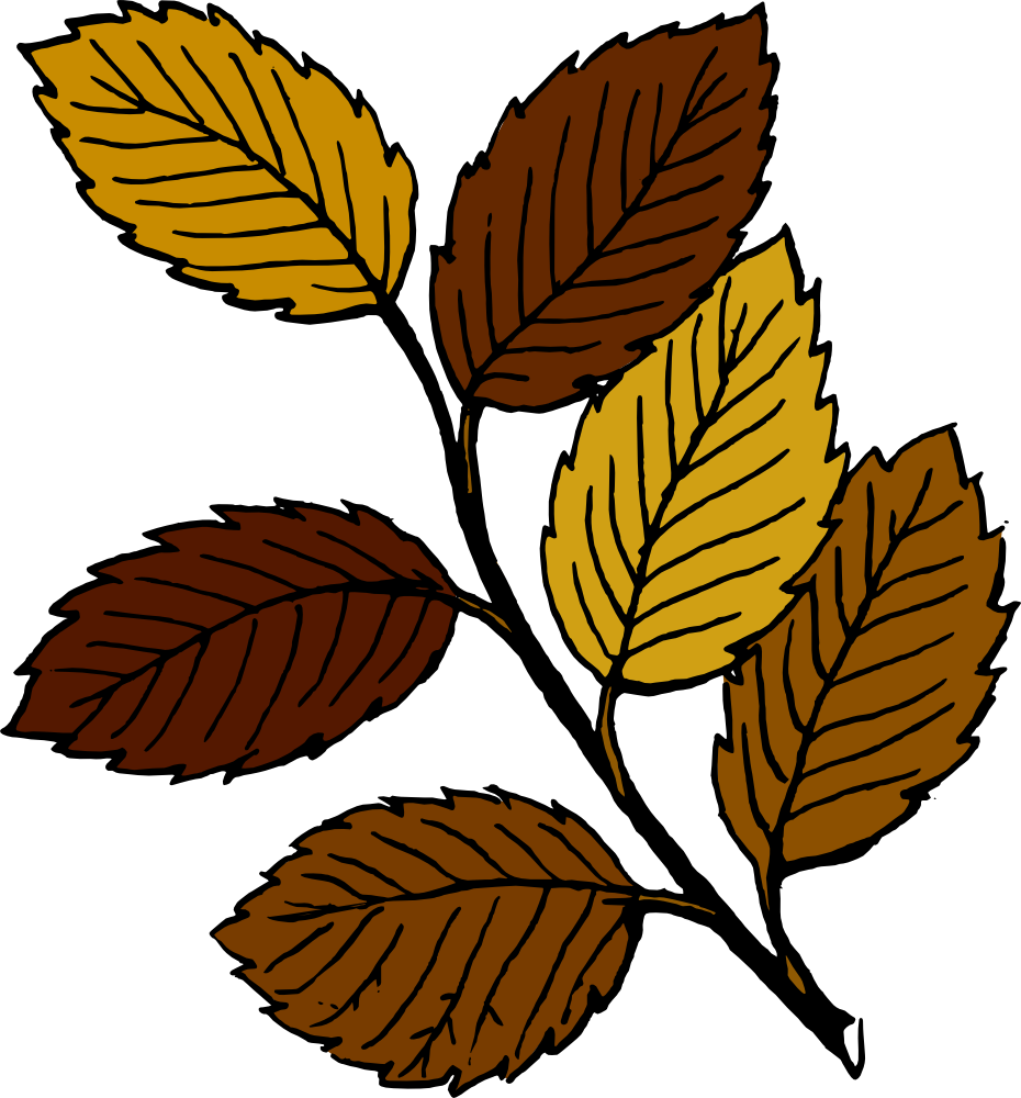 930x1000 Free Fall Leaves Clipart