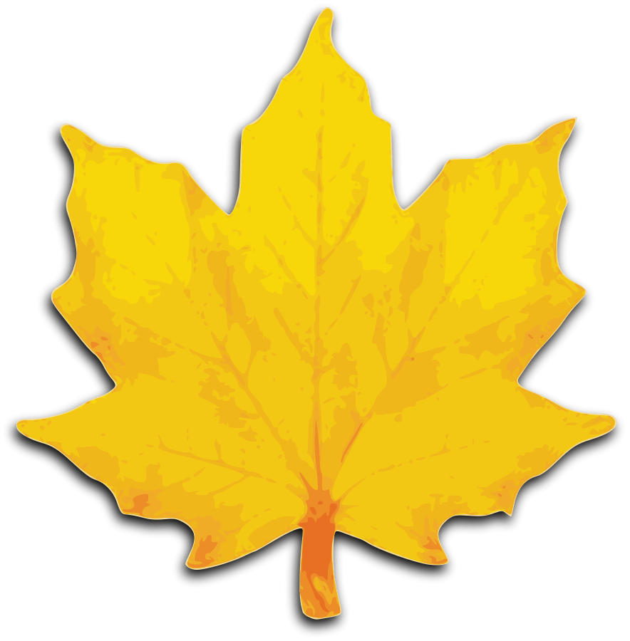 884x900 Gold Leaves Cliparts 216495