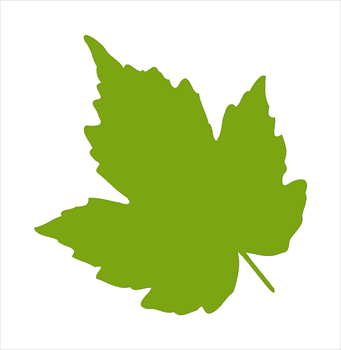 341x350 Leaves Clipart Leaves Clip Art Nature From Digitalcs On Image