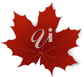 350x319 The Best Maple Leaf Clipart Ideas Maple Leaf