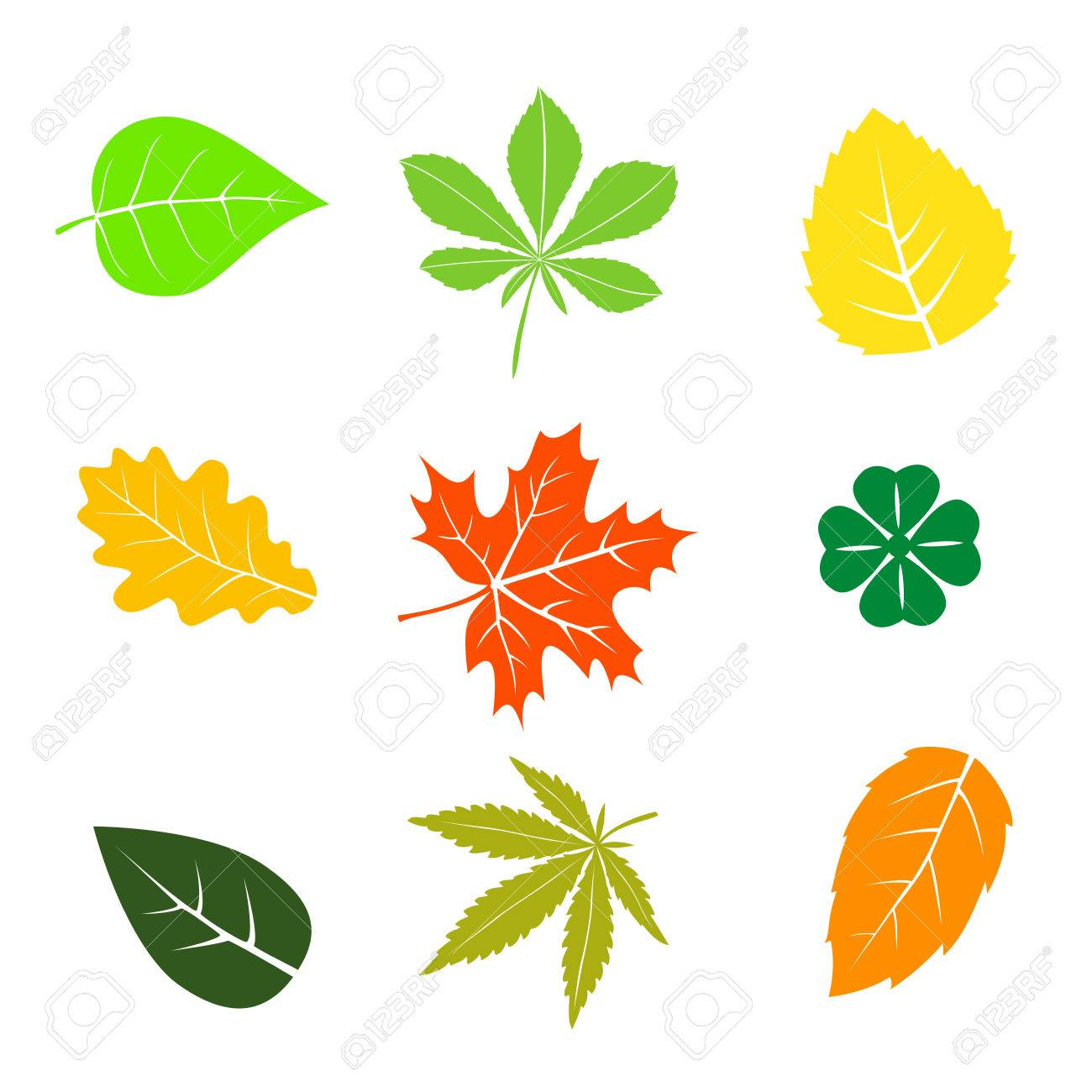 1300x1300 Clip Art Images Of Fall Leaves