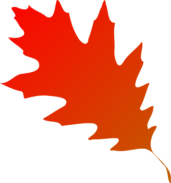 558x597 Autumn Leaf Red Orange Clip Art