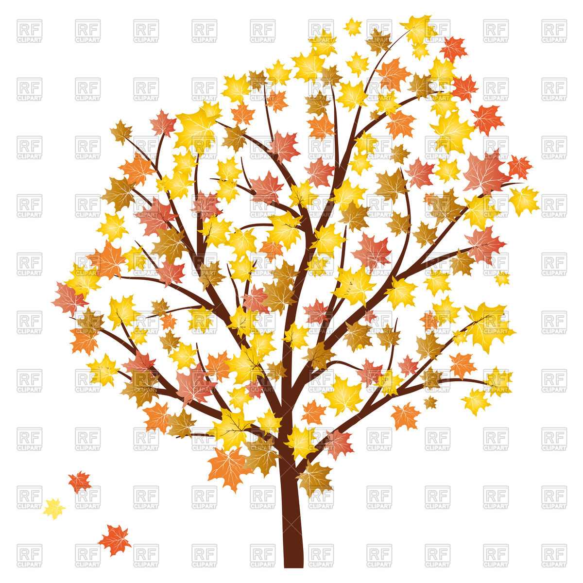 1200x1200 Autumn Maple Tree With Falling Leaves Royalty Free Vector Clip Art