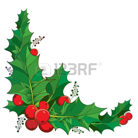 450x450 Vector Twig With Outline Leaves And Berries Of Ilex Or Christmas