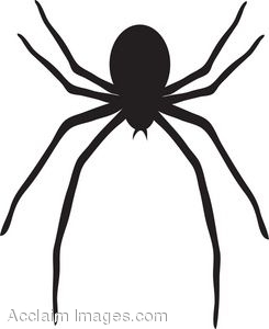 245x300 Clip Art Picture Of A Black Spider With Long Legs
