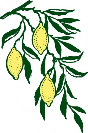 282x425 Lemon Slice Clip Art, Vector Lemon Slice