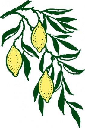 282x425 Lemon Slice Clip Art, Vector Lemon Slice