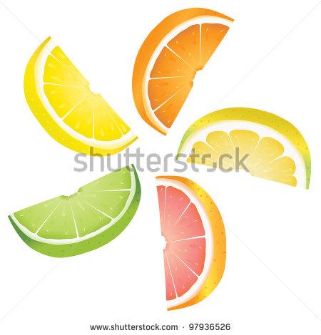 450x470 Lemon Slices Clip Art