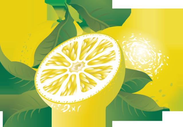 639x445 Lemon Citrus Fruit Clipart