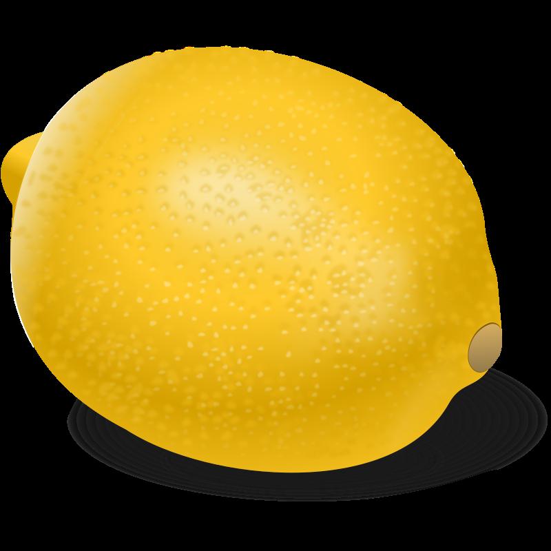 800x800 Lemon Slice Clip Art 2