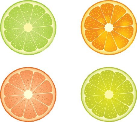 456x408 Slices Of Lime And Orange, Clip Art