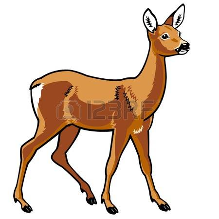 450x450 Isolated Deer Clipart, Explore Pictures