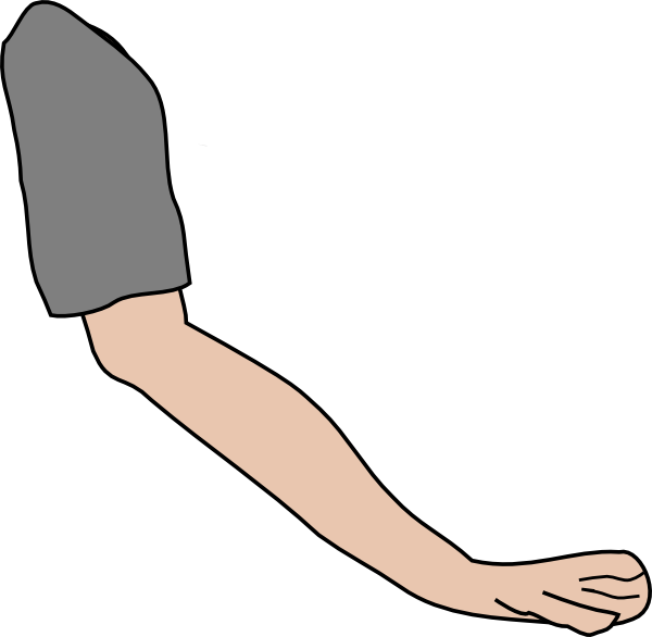 600x586 Arm Clip Art