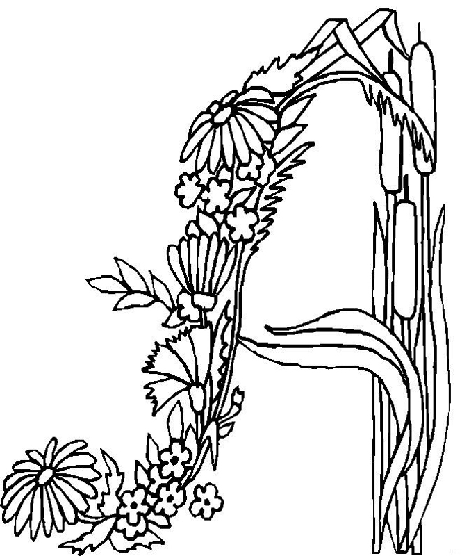665x800 Flower Page Printable Coloring Sheets Alphabet Flower A Coloring