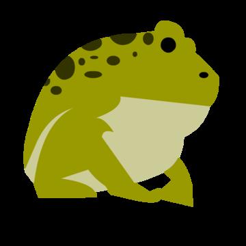 360x360 Amphibian Clipart Life Sciences