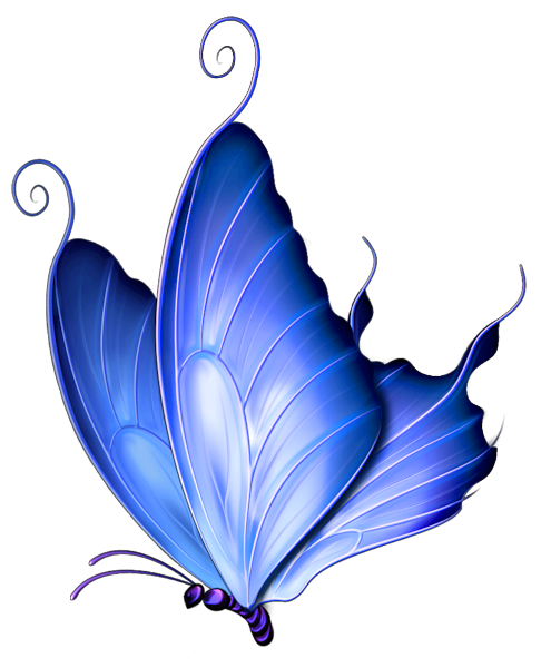495x600 Animals For Gt Blue Butterfly Clip Art Silk Painting