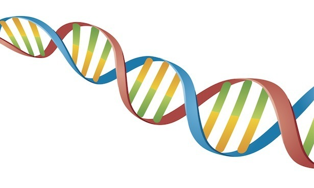 615x369 What Dna Actually Looks Like