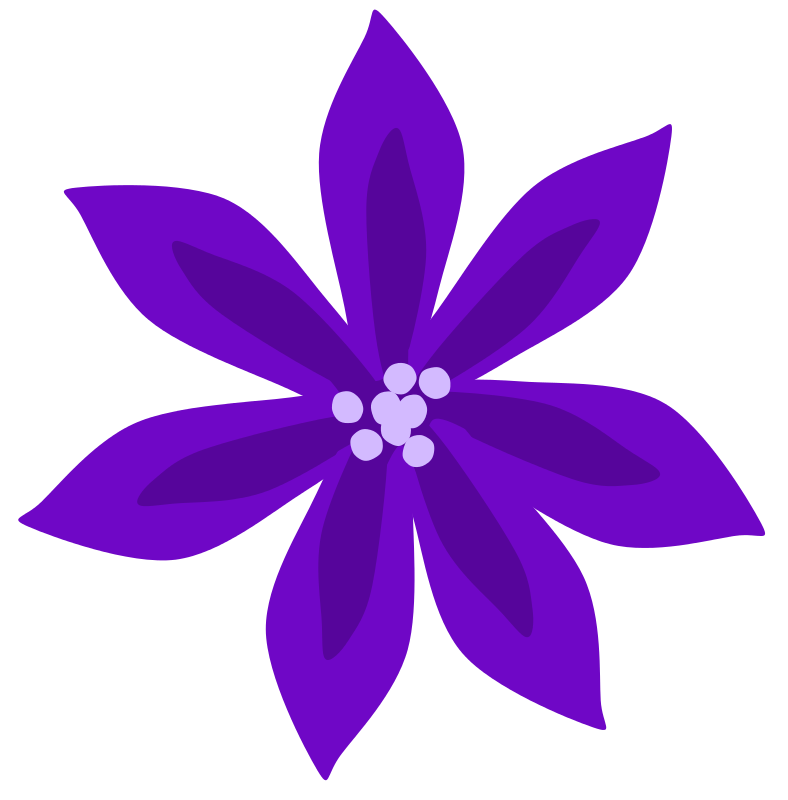 788x800 Lily Flower Clip Art Cliparts