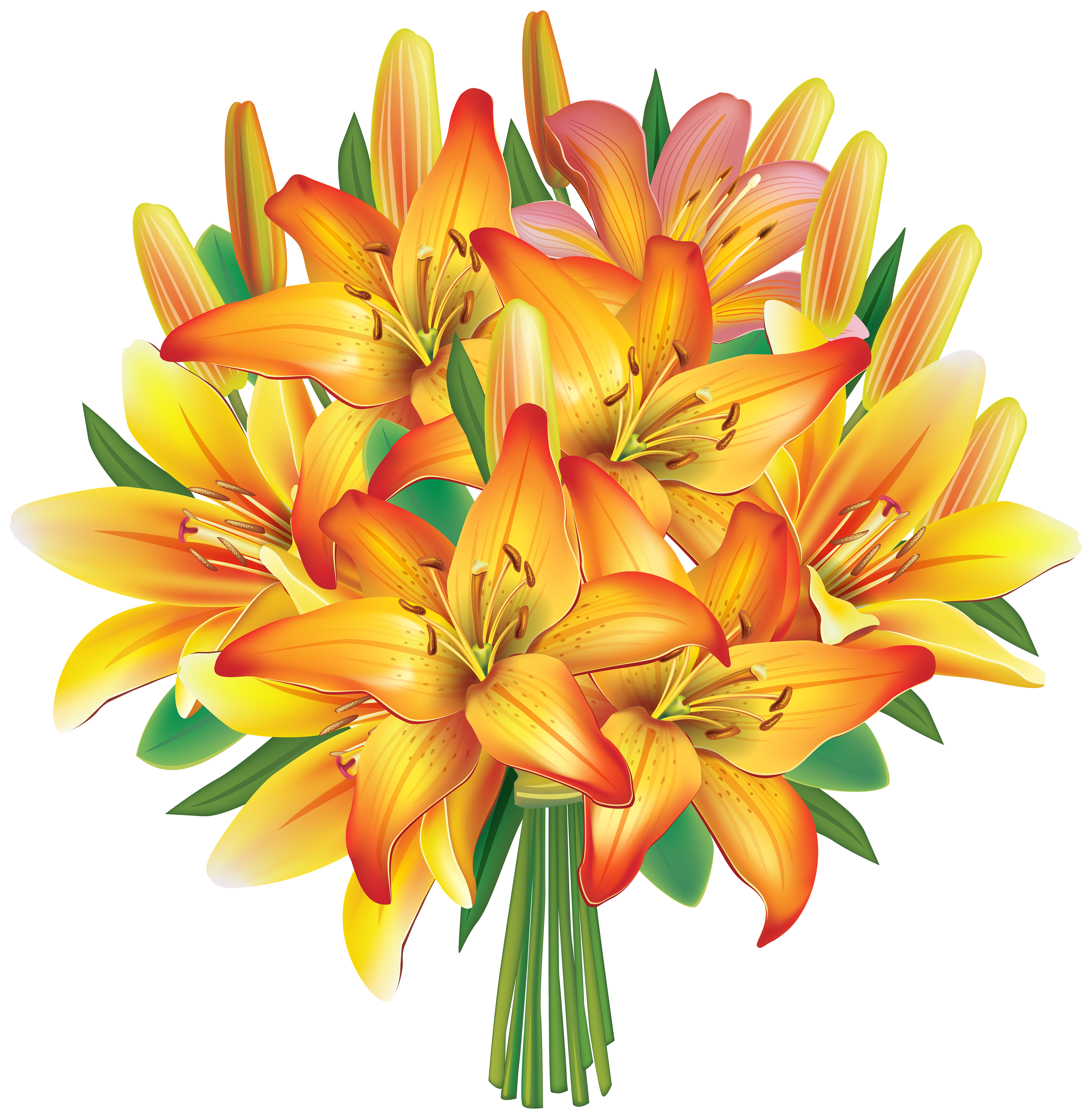 Lily Flower Clipart   Free download on ClipArtMag