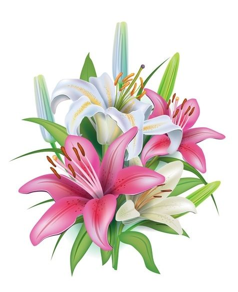 476x583 69 Best Clip Art Flowers Three Images Planting