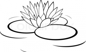 280x168 Rustic Water Lily Clipart