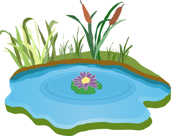 600x477 Lily Pad Clipart Pond Scene