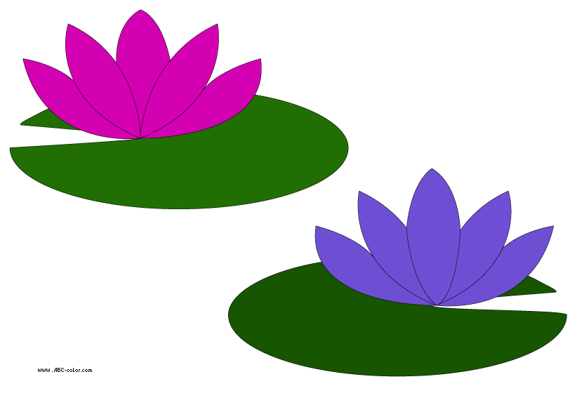822x567 Lotus Clipart Lily Pad Flower