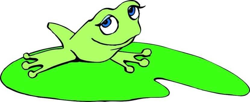 830x339 Best Frog On Lily Pad Clipart