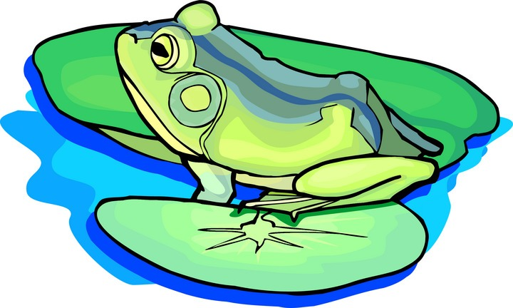 720x432 Free Frog Clipart