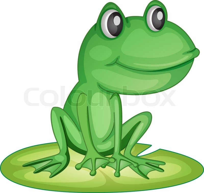 800x757 Frog On A Lily Pad Stock Vector Colourbox