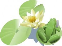 200x148 Leland Mcinnes Water Lily Clip Art Vector, Free Vector Images