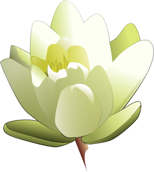 534x599 Lily Pad Clipart Animated