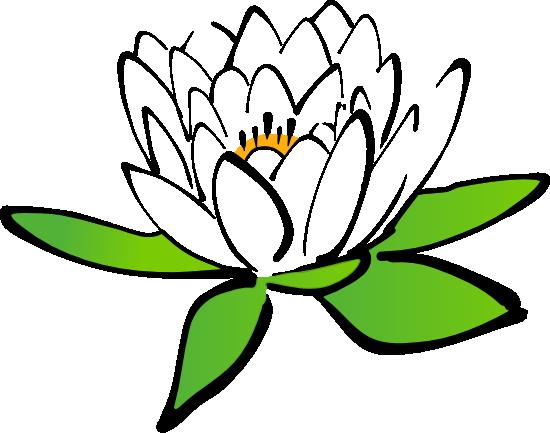 550x433 White Lotus Flower Clip Art Cliparts