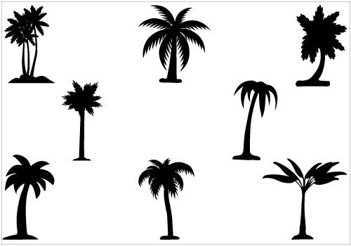 500x350 Free Palm Tree Vector