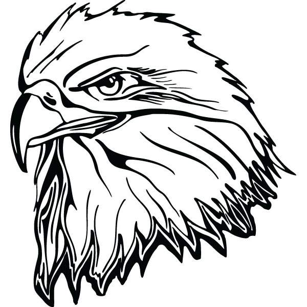 600x600 Eagle Head Bird Clip Art For Engraved Products