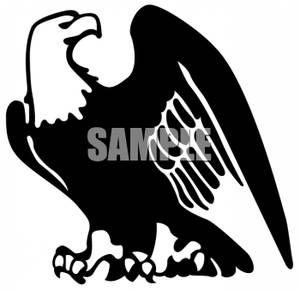 300x291 Eagle Clipart Black