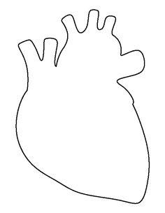 236x305 Anatomical Heart Line Art